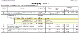Defect Aging Report